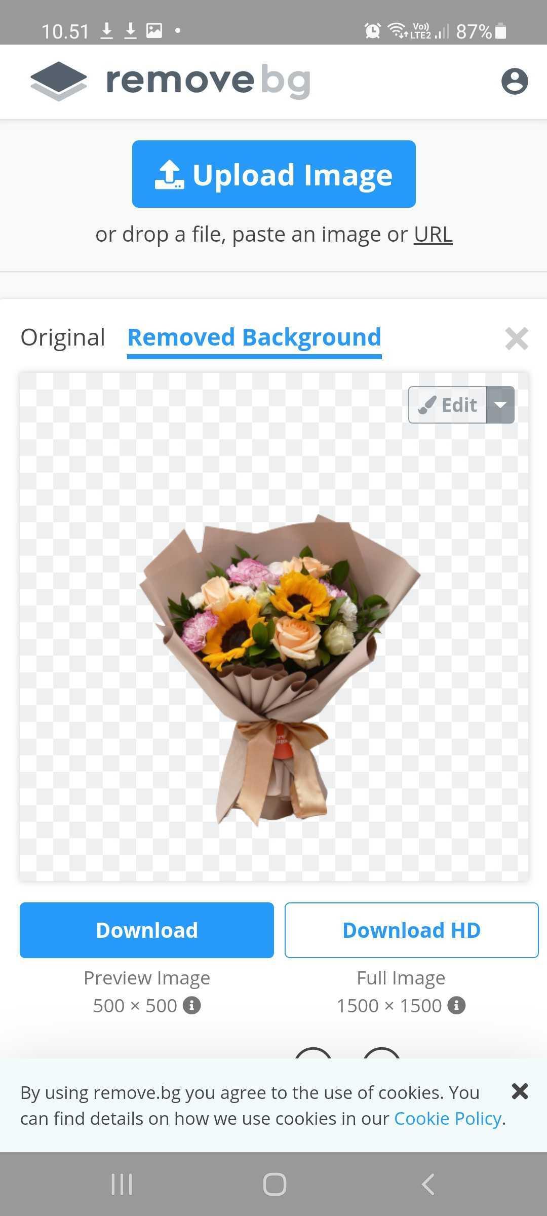 contoh selesai menghapus background menggunakan remove bg
