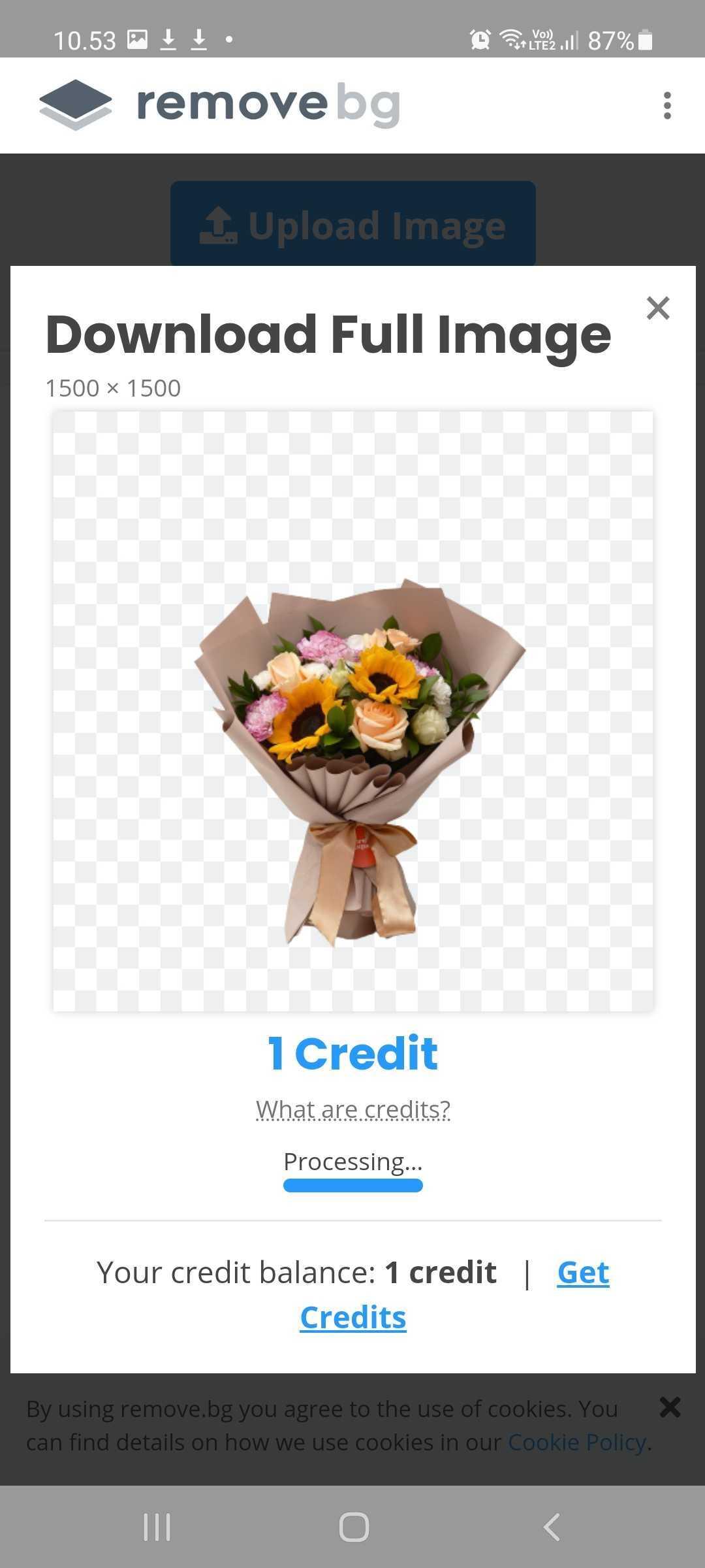 download gambar pada remove bg
